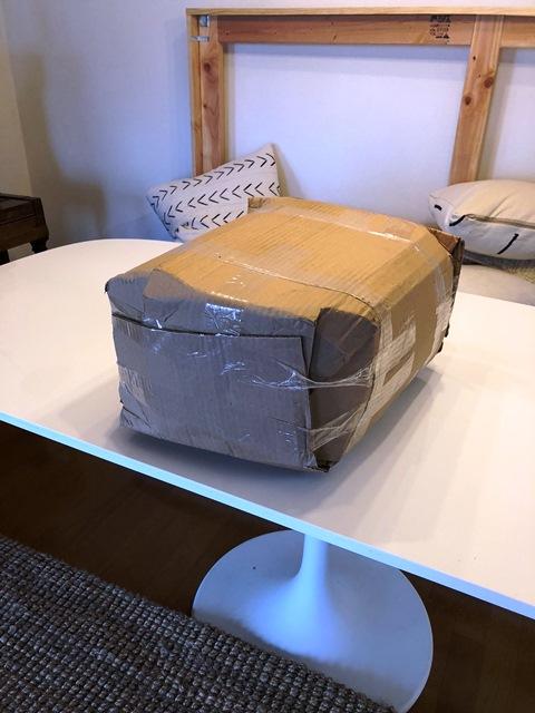 IMG_2660-foam in box